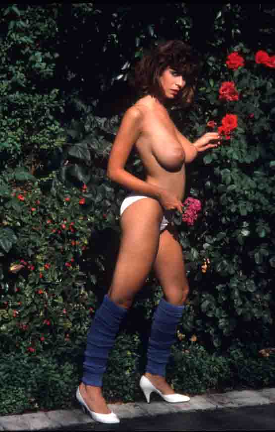 Christy Canyon 84 photos #15538