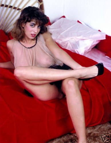 Christy Canyon 88 photos #15586
